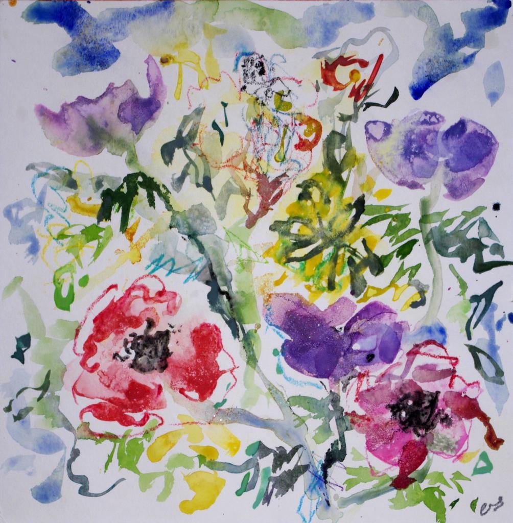 anemone 16