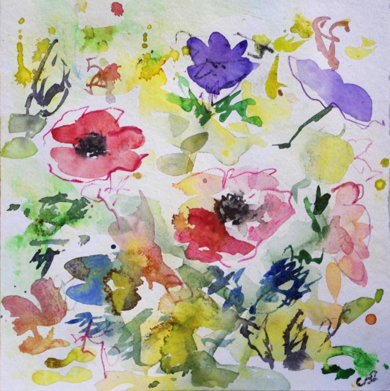 anemone 5