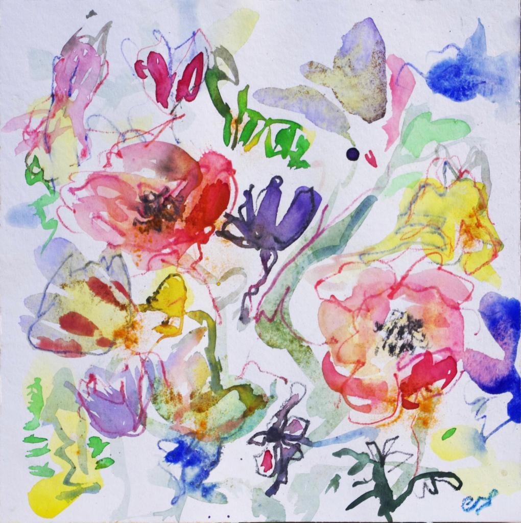 anemone 7