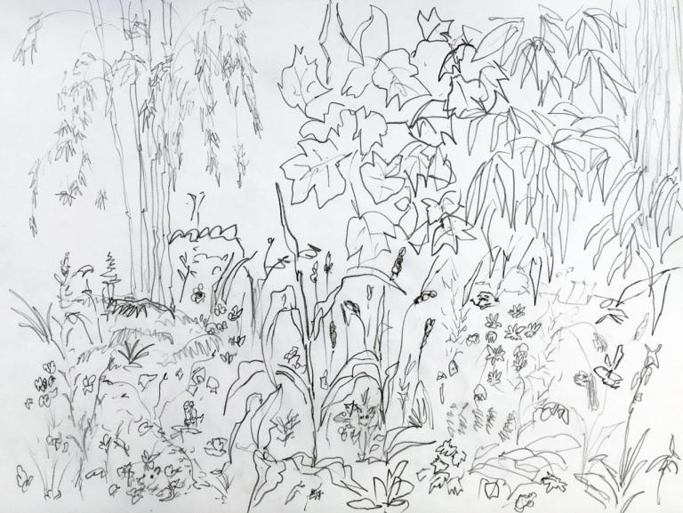 tulipier 2