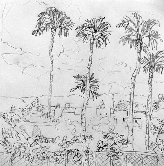 5-palmiers
