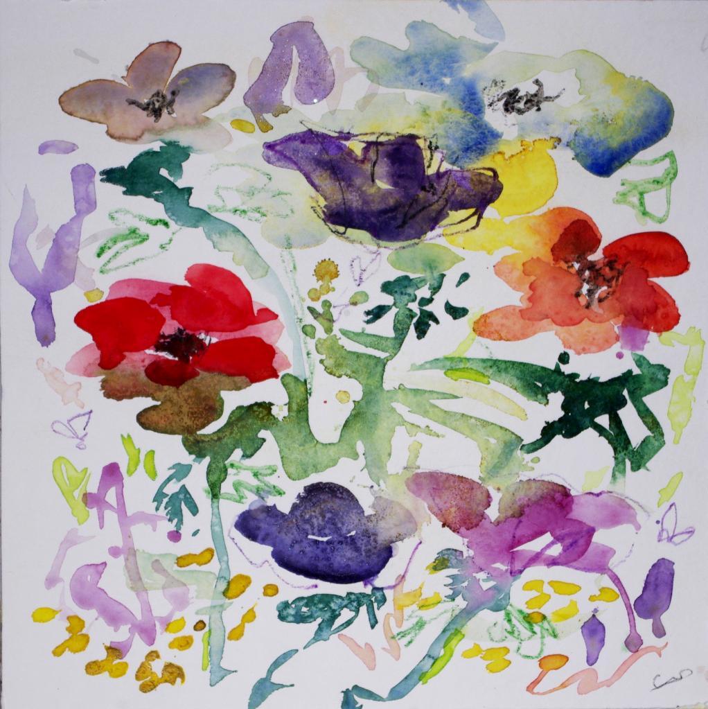 anemone 10