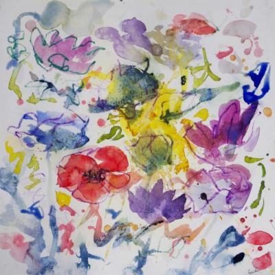anemone 11