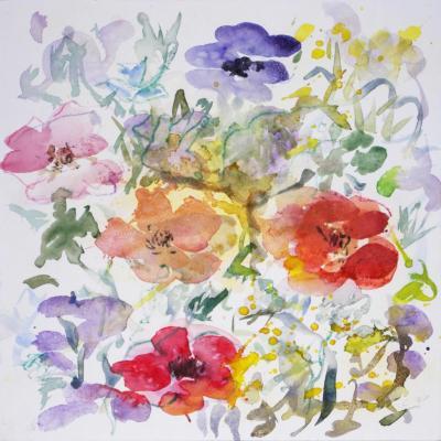 anemone 12
