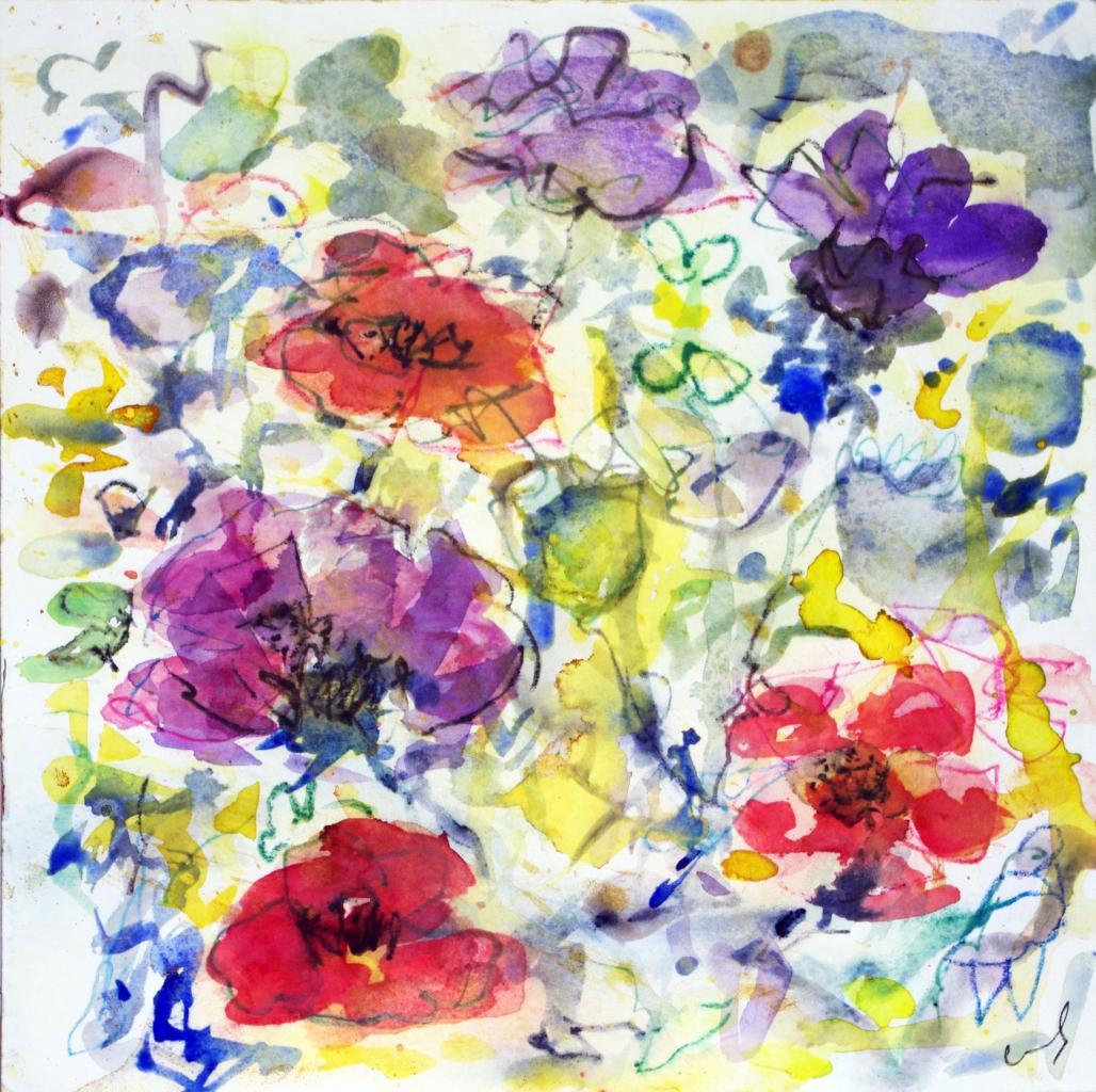 anemone 13