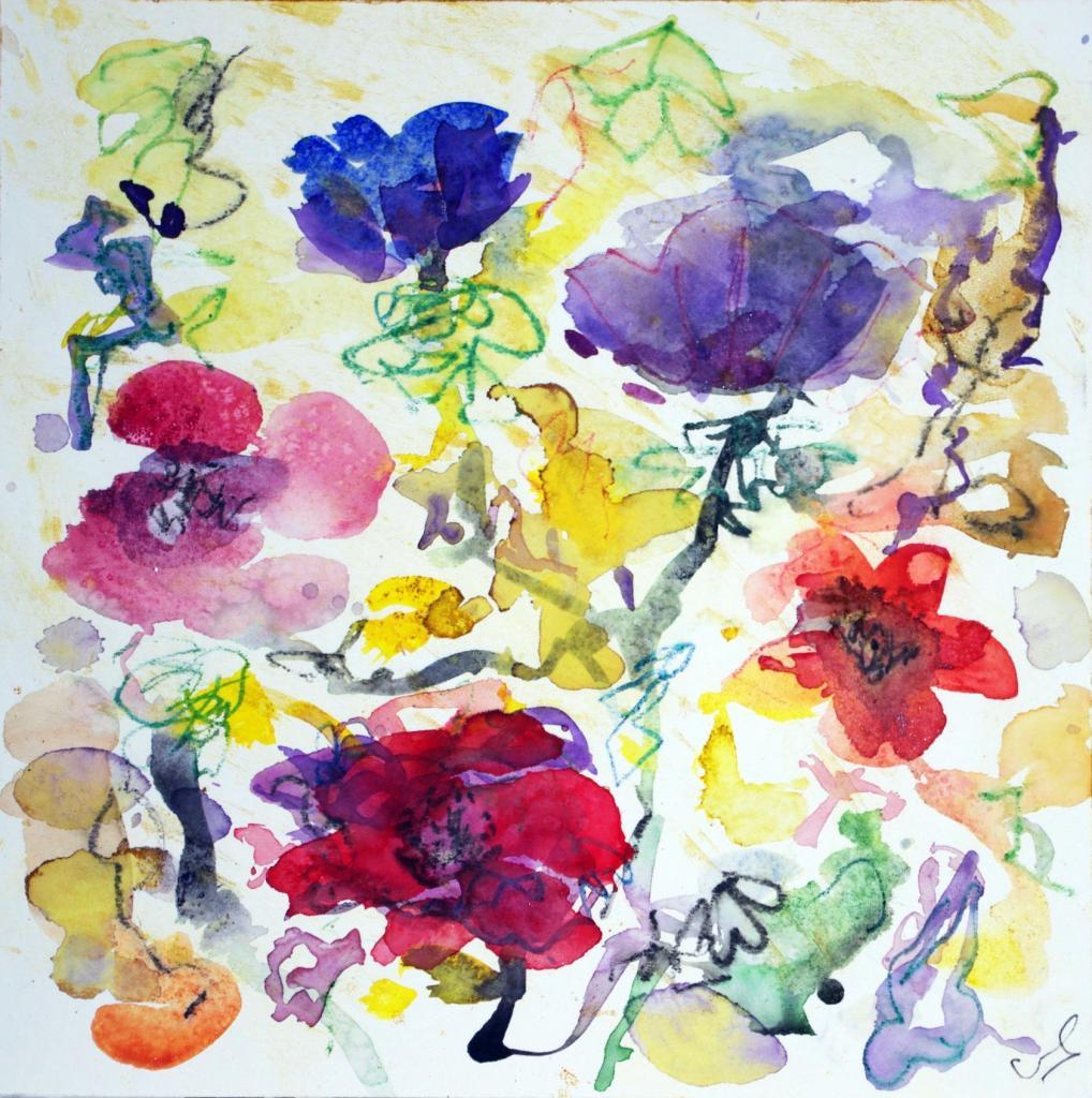 anemone 15