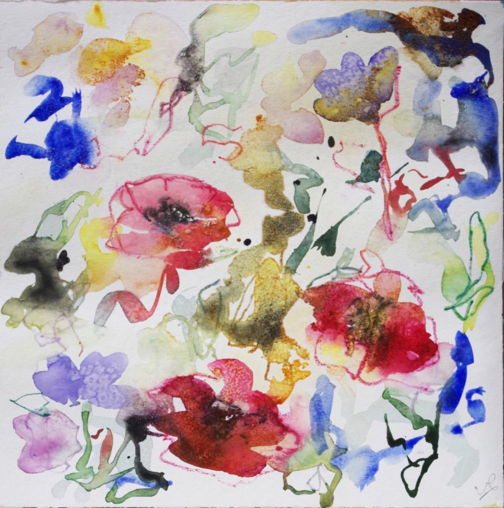 anemone 8