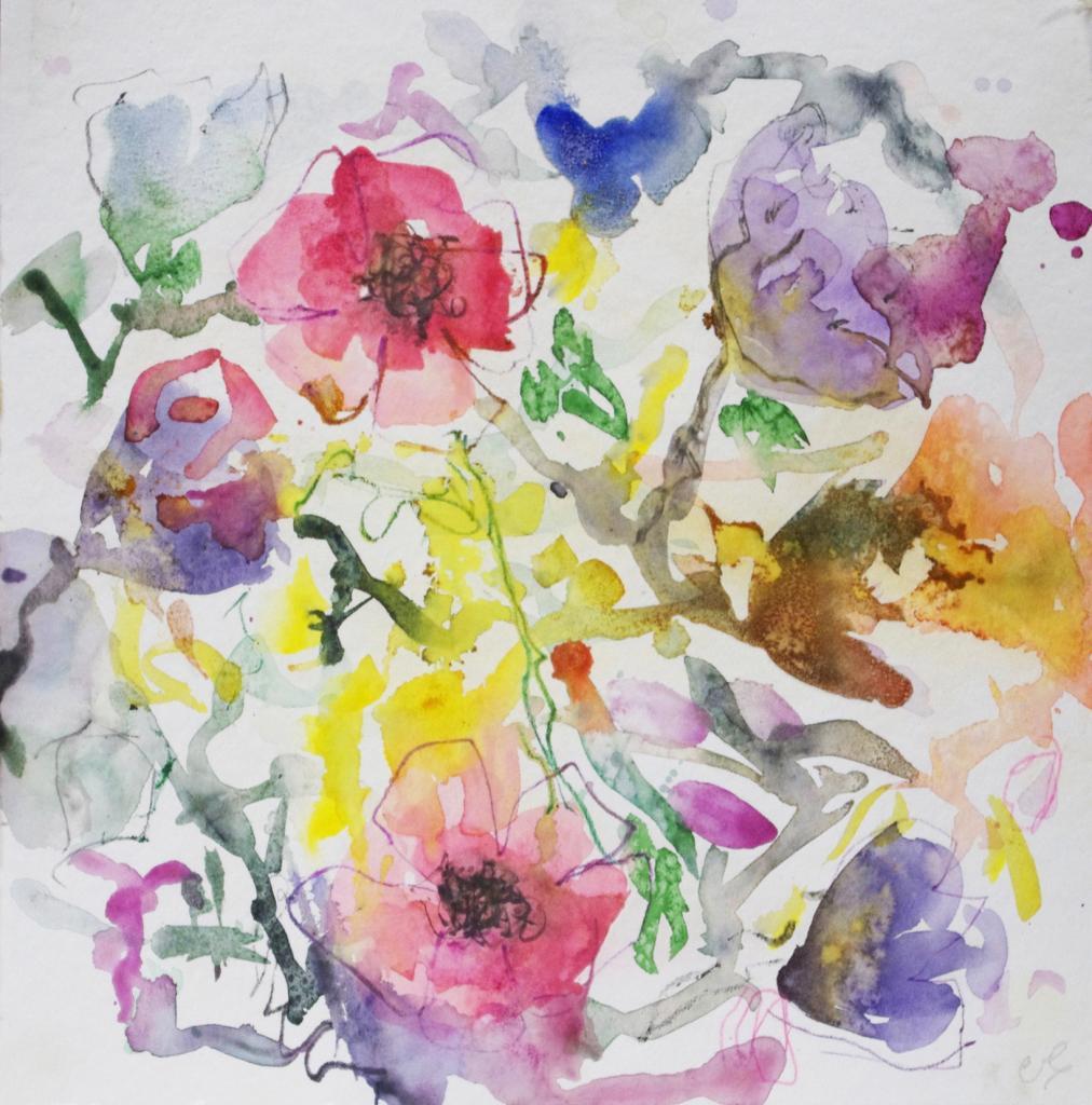 anemone 9