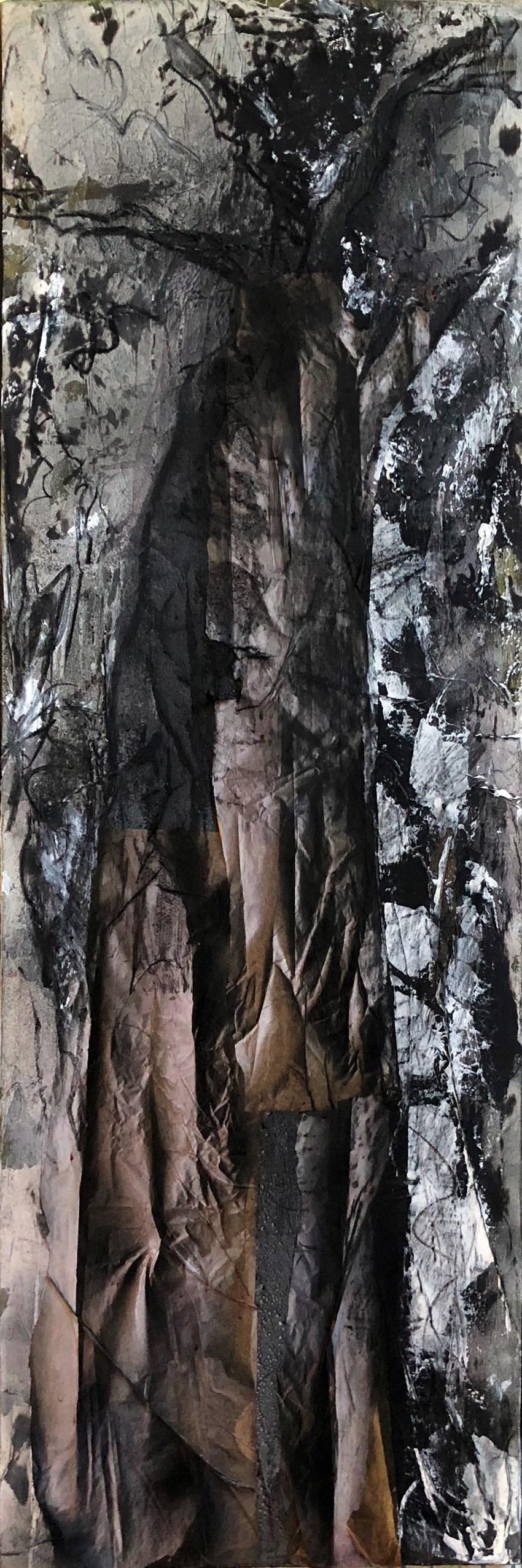Baobab 2   150/50 cm