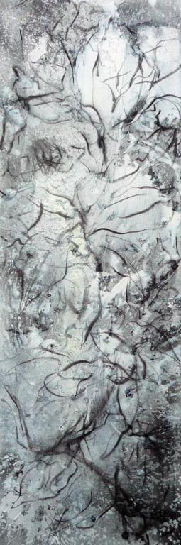 magnolia-grandiflora-1-