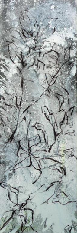 magnolia-grandiflora2