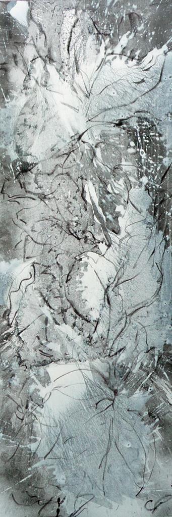 magnolia-grandiflora3
