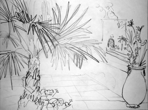 palmier-