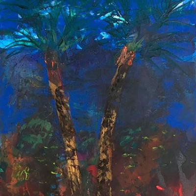 Palmier de Gigaro 1  150/50 cm