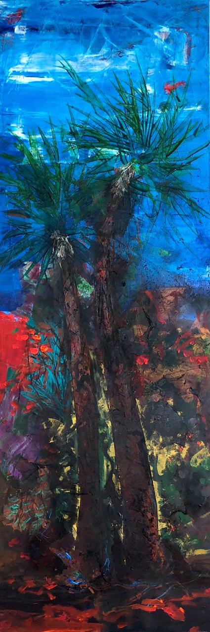 Palmier de Gigaro 2  150/50 cm