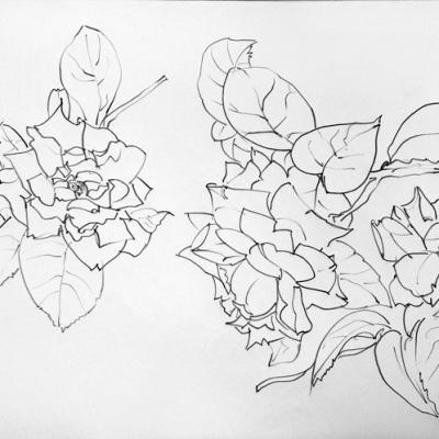 trois-roses